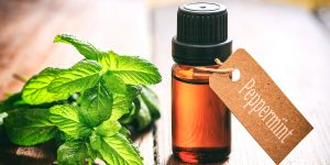 Peppermint Essential Oil | Narayan Wellness Pleasanton, CA